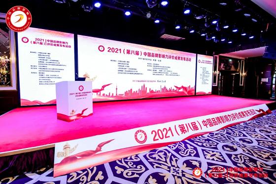 丹青谱荣膺2021中国品牌影响力三项殊荣,再获权威认可!